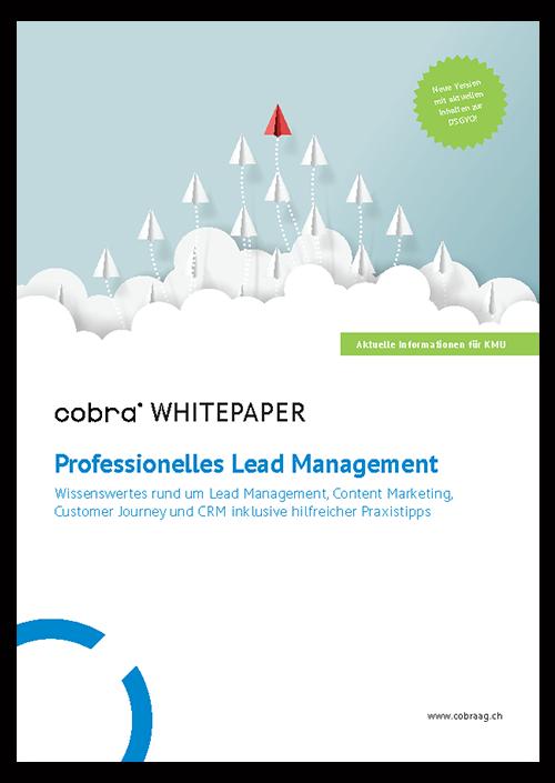 Bild-Whitepaper-Lead Management-Seite1-mit-Schatten.png