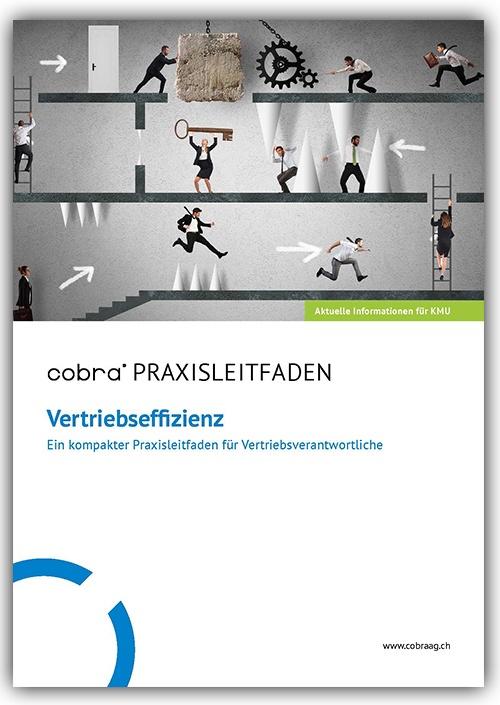 Bild-Whitepaper-Vertriebseffizienz-Seite1-mit-Schatten.jpg